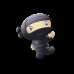 le ninja du web